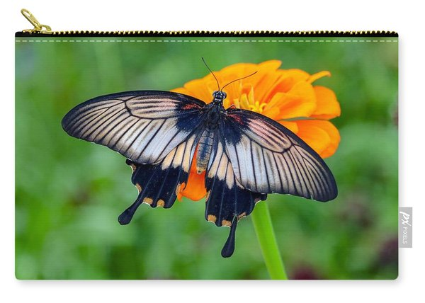 Kite Swallowtail  Carry-all Pouch