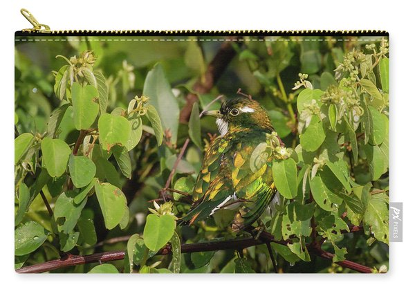 Klaas's Cuckoo Carry-all Pouch