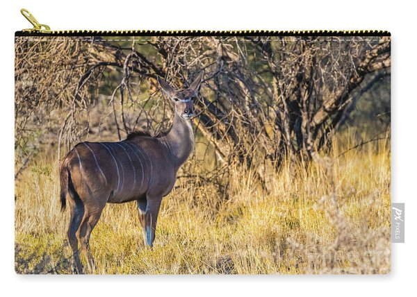 Kudu, Namibia Carry-all Pouch