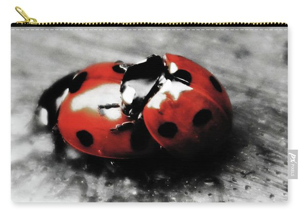 Lady Bug Loving Carry-all Pouch