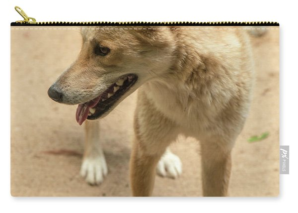 Large Australian Dingo Outside Carry-all Pouch