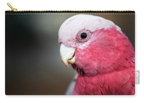 Large Pink And Grey Galah. Carry-all Pouch