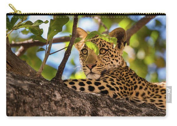Carry-all Pouch featuring the photograph Lc11 by Joshua Able's Wildlife