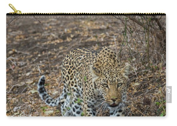 Carry-all Pouch featuring the photograph LC2 by Joshua Able's Wildlife