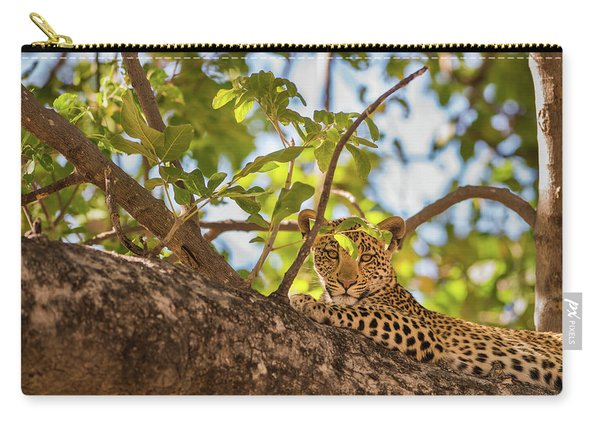 Carry-all Pouch featuring the photograph LC9 by Joshua Able's Wildlife