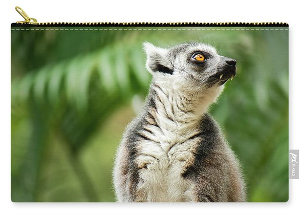 Carry-all Pouch featuring the photograph Lemur By Itself Amongst Nature. by Rob D Imagery