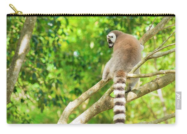 Lemur By Itself In A Tree During The Day. Carry-all Pouch