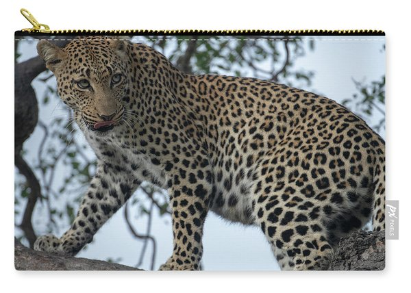 Leopard Anticipation Carry-all Pouch
