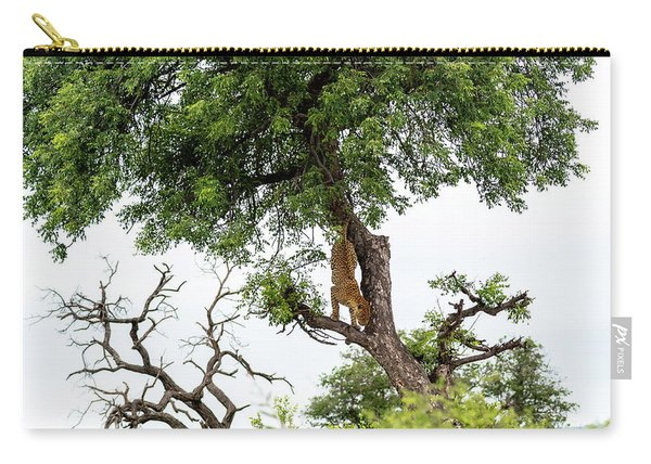 Leopard Descending A Tree Carry-all Pouch