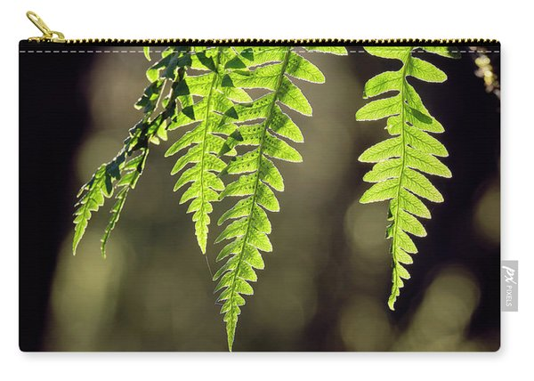 Carry-all Pouch featuring the photograph Licorice Fern by Whitney Goodey