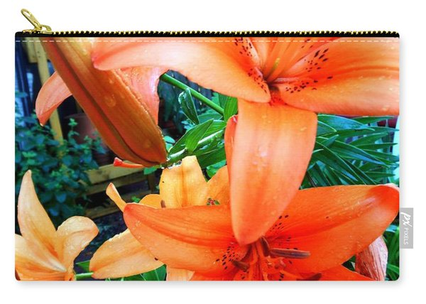 Lily Langtree Carry-all Pouch
