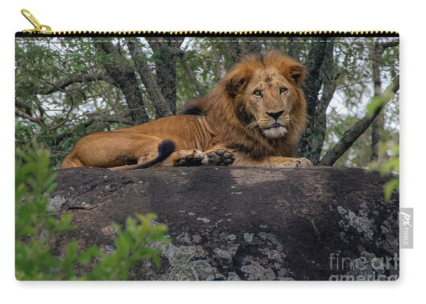 Lion Rocks Carry-all Pouch