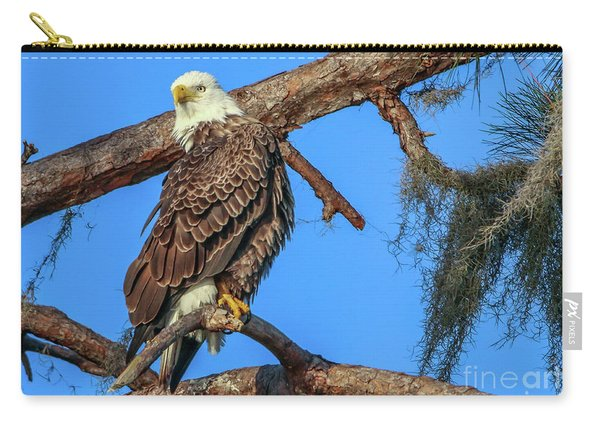 Carry-all Pouch featuring the photograph Lookout Eagle by Tom Claud