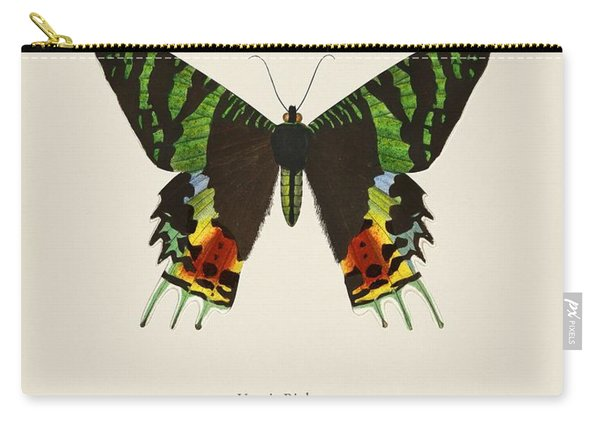 Madagascan Sunset Moth  Urania Riphaeus Illustrated By Charles Dessalines D' Orbigny  1806-1876 3 Carry-all Pouch