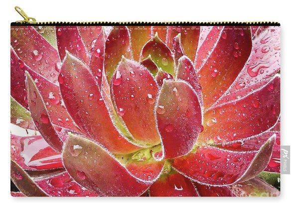 Magical Succulent Carry-all Pouch