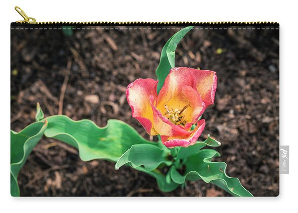 Magnificence Carry-all Pouch