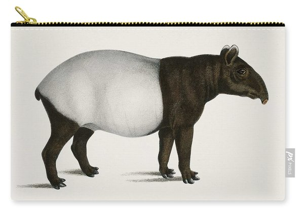 Malayan Tapir  Equus Montanus  Illustrated By Charles Dessalines D' Orbigny  1806-1876  Carry-all Pouch