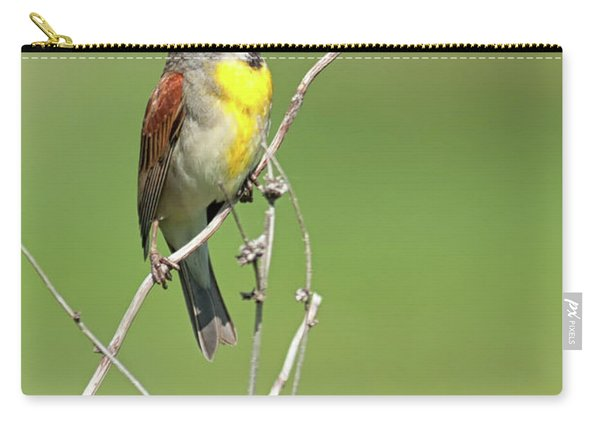 Male Dickcissel Carry-all Pouch