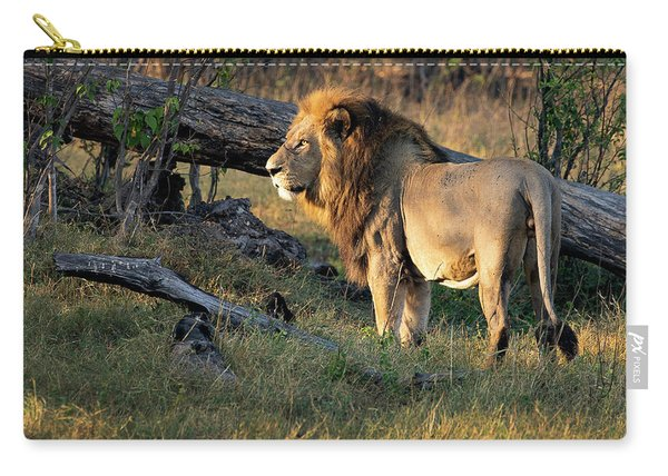 Male Lion In Botswana Carry-all Pouch