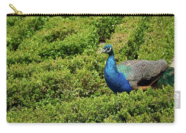 Male Peafowl In Retiro Park, Madrid, Spain Carry-all Pouch