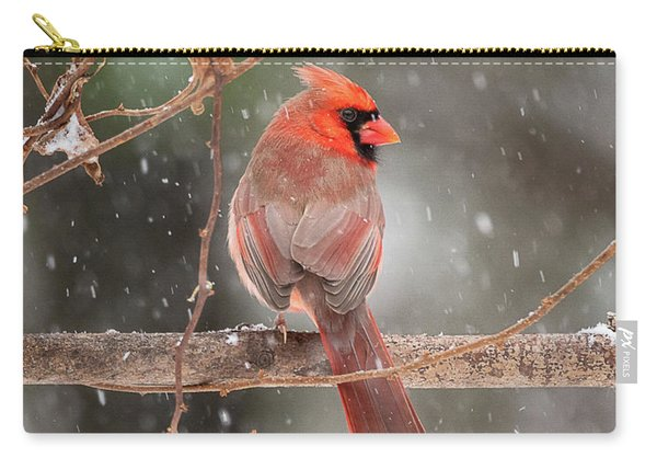 Male Red Cardinal Snowstorm Carry-all Pouch