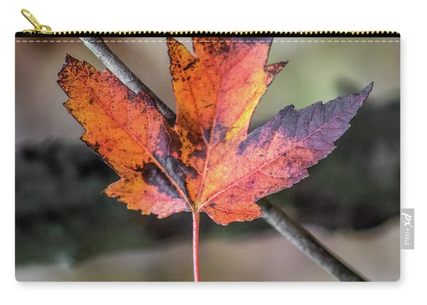 Maple 1 Carry-all Pouch