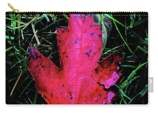 Carry-all Pouch featuring the photograph Maple Leaf by Allin Sorenson