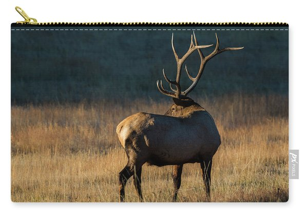 Carry-all Pouch featuring the photograph ME3 by Joshua Able's Wildlife
