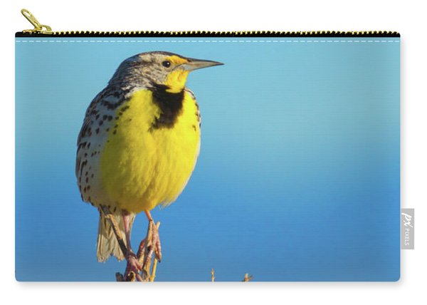 Carry-all Pouch featuring the photograph Meadowlark by John De Bord
