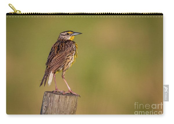 Carry-all Pouch featuring the photograph Meadowlark On Post by Tom Claud
