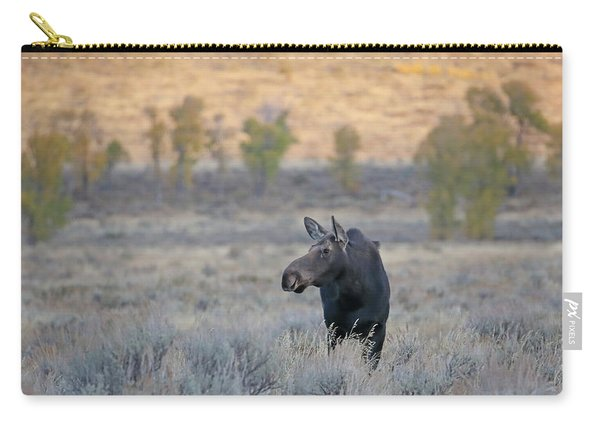 Carry-all Pouch featuring the photograph Moose Cow In Gros Ventre by Jean Clark