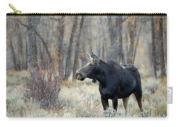 Carry-all Pouch featuring the photograph Moose Cow Study by Jean Clark