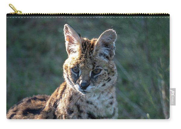 Morning Lit Serval Cat Carry-all Pouch