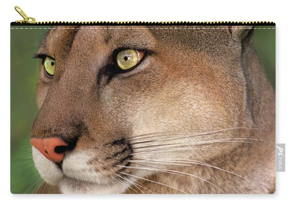 Mountain Lion Portrait Wildlife Rescue Carry-all Pouch