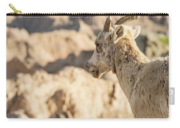 Mountain Sheep In Badlands National Park Carry-all Pouch