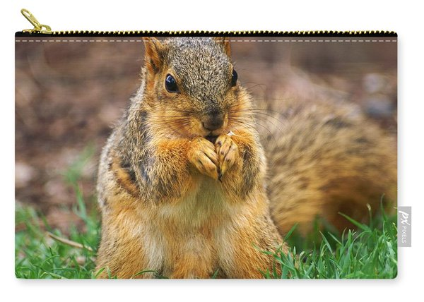 Munching Cute Fox Squirrel Carry-all Pouch