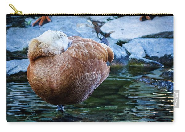 Napping At The Pond Carry-all Pouch