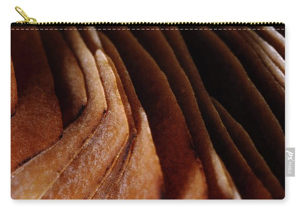 Natural Canyons Carry-all Pouch