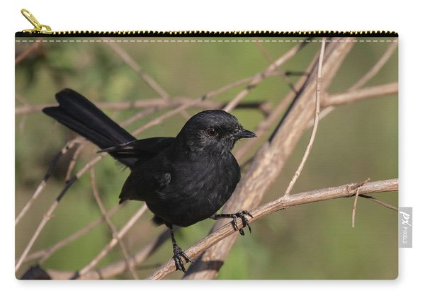 Northern Black Flycatcher Carry-all Pouch