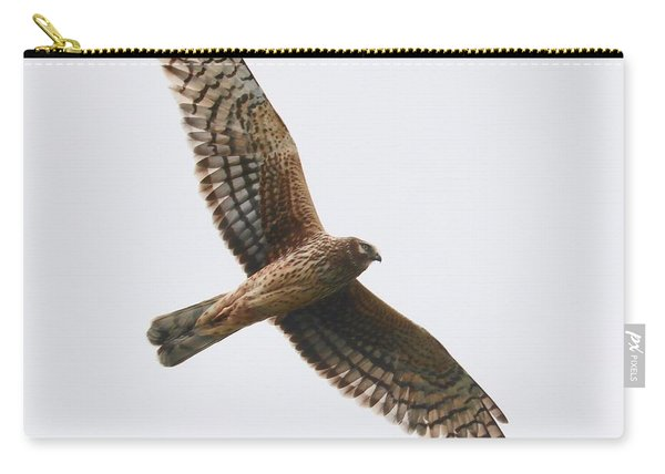Northern Harrier In Flight Carry-all Pouch
