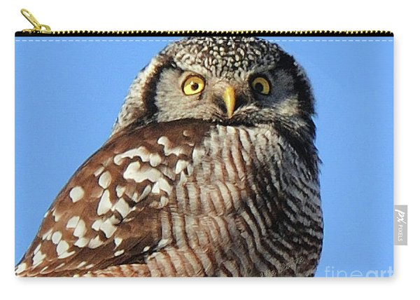 Northern Hawk-owl Carry-all Pouch
