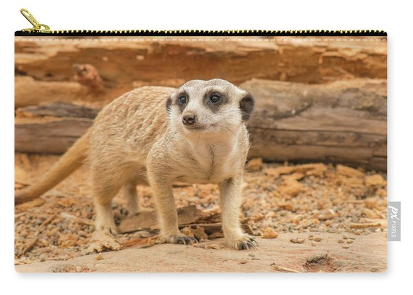 One Meerkat Looking Around. Carry-all Pouch