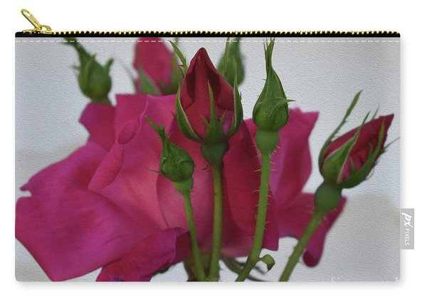Painted Its A Knockout Carry-all Pouch