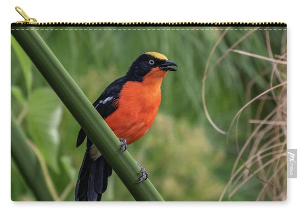Papyrus Gonolek Carry-all Pouch