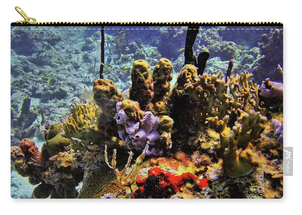 Patch Reef Bluff Carry-all Pouch