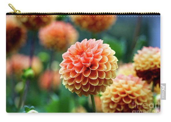 Peach Dahlias Carry-all Pouch