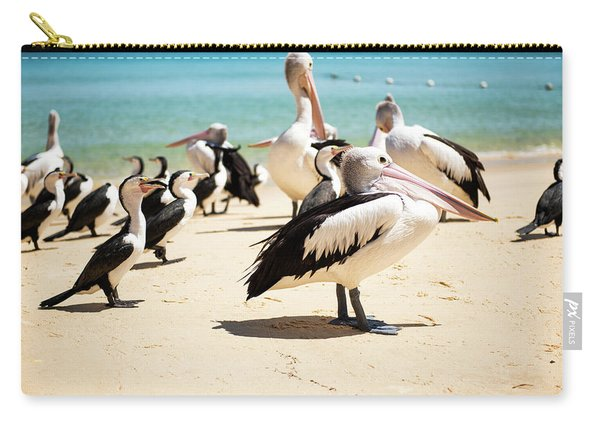 Carry-all Pouch featuring the photograph Pelicans During The Day by Rob D Imagery