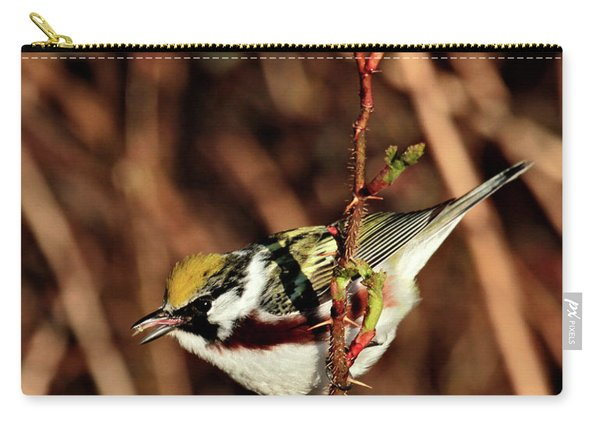 Perky Little Warbler Carry-all Pouch