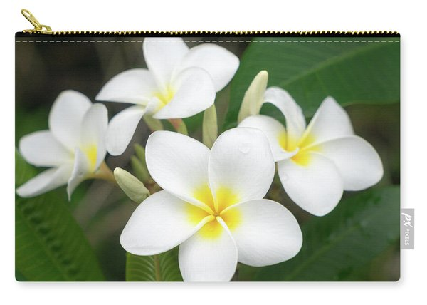 Pleasing Plumeria Carry-all Pouch