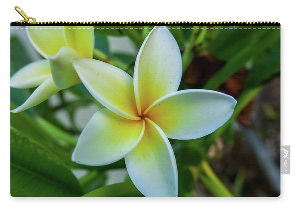 Plumeria In Bloom Carry-all Pouch